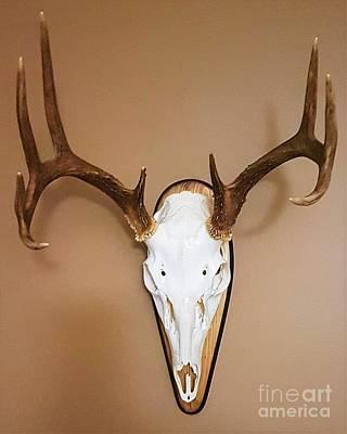 Photograph - Skull by Brianna Kelly