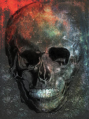 Mixed Media - Skull Colors by Lisa Stanley