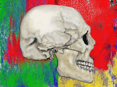 Mixed Media - Skull In Primary Without Shape by Lisa Stanley