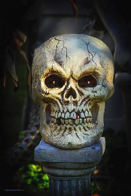 Photograph - Skull On Tillson Street  by LeeAnn McLaneGoetz McLaneGoetzStudioLLCcom