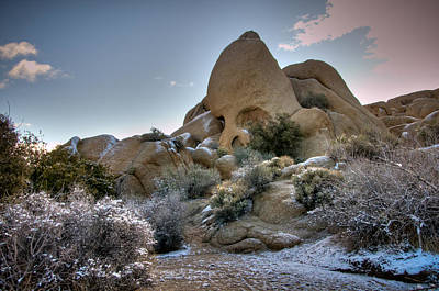 Photograph - Skull Rock In Snow by Connie Cooper-Edwards