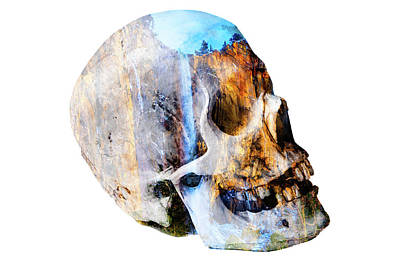 Skull Waterfall Art Print