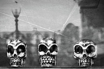 Photograph - Skulls In A Window by Stuart Litoff