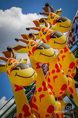Photograph - Sky Giraffes by Joann Long