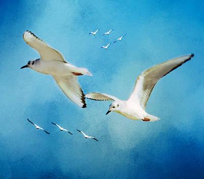 Sky High Flight Art Print