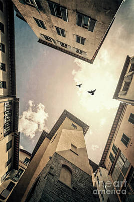 Photograph - Sky Is High by Evelina Kremsdorf
