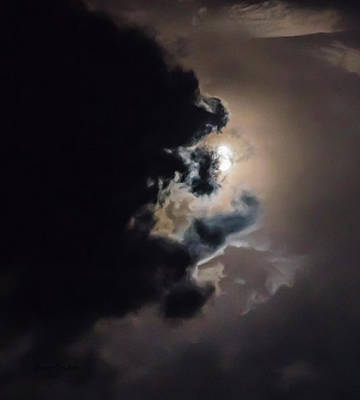 Photograph - Sky Life In Moon Light by Steven Poulton