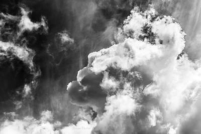 Photograph - Sky Life Regal by Steven Poulton