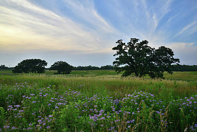 Photograph - Sky Lights Up At Silver Creek Conservation Area by Ray Mathis