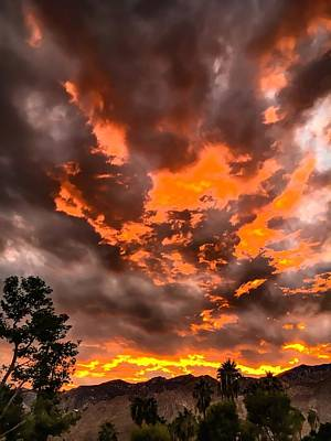 Photograph - Sky On Fire by Chris Tarpening