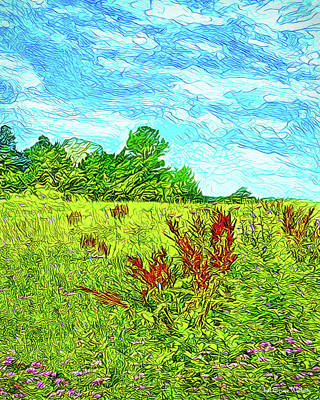 Digital Art - Sky Touches Wildflowers - Hiking View In Boulder Colorado by Joel Bruce Wallach