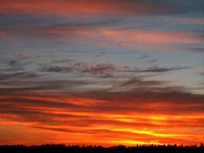 Photograph - Skying by Chris Dunn
