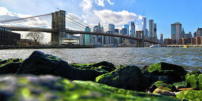Art Print featuring the photograph Skyline by Mitch Cat