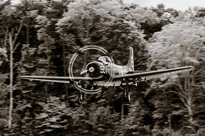 Photograph - Skyraider Black And White by Liza Eckardt