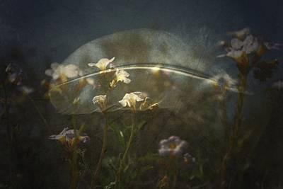Photograph - Skys by Mark Ross