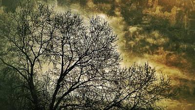 Photograph - Skyward by Al Harden