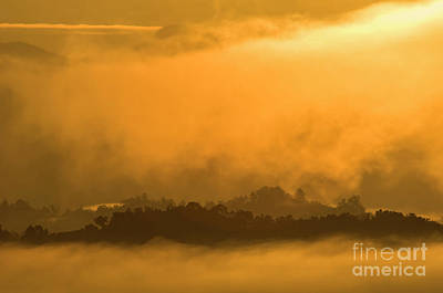 Photograph - sland in the Mist - D009994 by Daniel Dempster