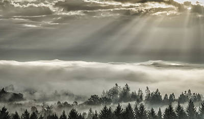 Photograph - Slanting Rays by Don Schwartz