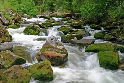 Photograph - Slate Creek, Nez Perce National Forest, Idaho by Robert Mutch