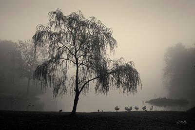 Photograph - Slater Park Landscape No. 1 by David Gordon