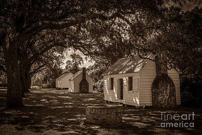 Photograph - Slave Cabins On The Grounds Of Mcleod Plantation by Dale Powell