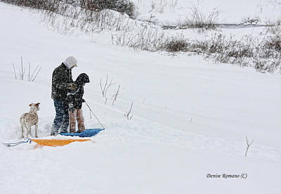Photograph - Sledding by Denise Romano