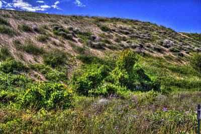 Photograph - Sleeping Bear Dunes Empire Michigan by Roger Passman