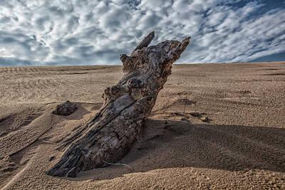 Photograph - Sleeping Bear Dunes Northern Michigan by John McGraw