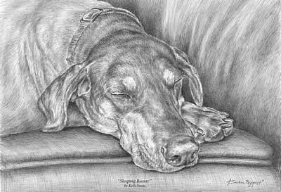 Pinscher Drawing - Sleeping Beauty - Doberman Pinscher Dog Art Print by Kelli Swan