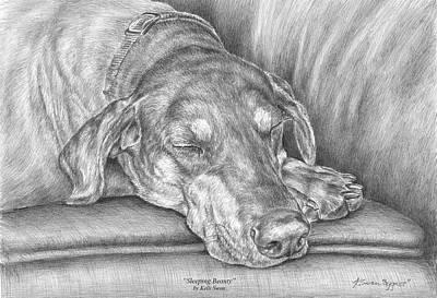 Sleeping Beauty - Doberman Pinscher Dog Art Print Art Print