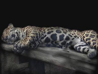 Digital Art - Sleeping Beauty by M Montoya Alicea