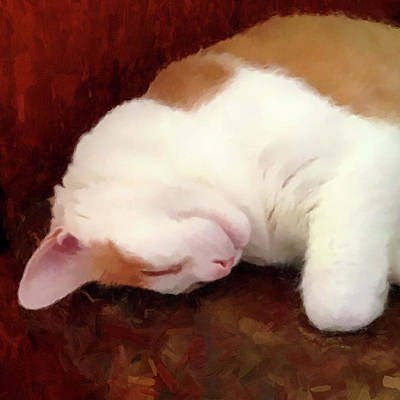 Digital Art - Sleeping Boo by Gary Grayson