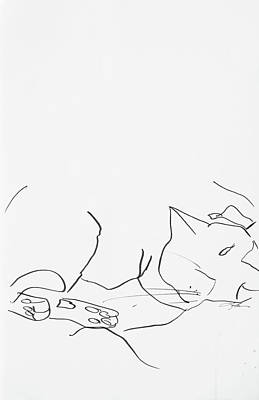 Drawing - Sleeping Cat II by Leela Payne