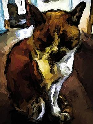 Digital Art - Sleeping Cat Of Brown And White With Shadows by Jackie VanO