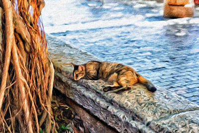 Mixed Media - Sleeping Cat On The Island by Boris Mordukhayev
