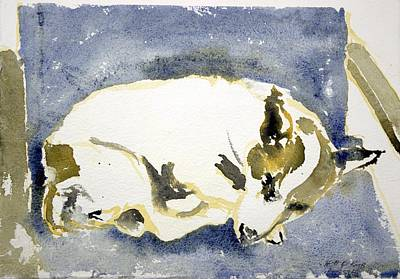 Sleeping Dog Art Print