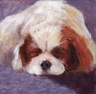Sleeping Dog Original