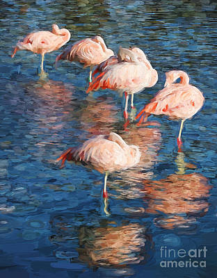 Photograph - Sleeping Flamingos In Water Digitally Painted Photo by Clare VanderVeen
