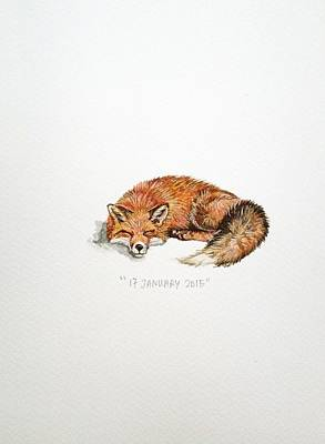 Fox Drawing - Sleeping Fox by Venie Tee