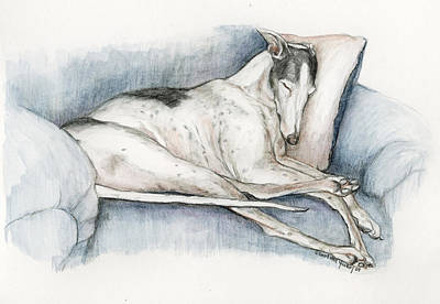 Rescued Greyhound Painting - Sleeping Greyhound by Charlotte Yealey
