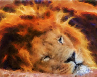 Digital Art - Sleeping Lion by John Beck