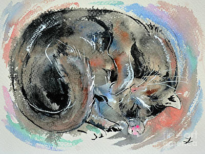 Sleeping Tortoiseshell Cat Original by Zaira Dzhaubaeva