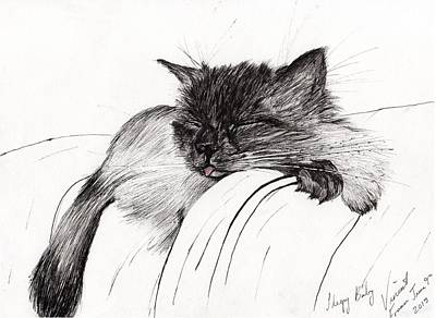 Kitty Drawing - Sleepy Baby by Vincent Alexander Booth