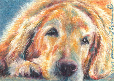 Drawing - Sleepy Dog by Melissa J Szymanski