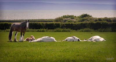 Sleepy Gypsy Afternoon By The Water Art Print by Elizabeth Sescilla