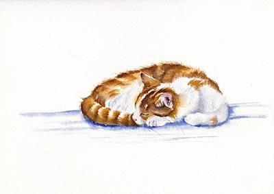 Sleepy Head Original by Debra Hall