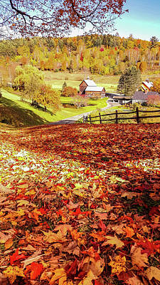 Photograph - Sleepy Hollow - Pomfret Vermont-1 by Jeff Folger