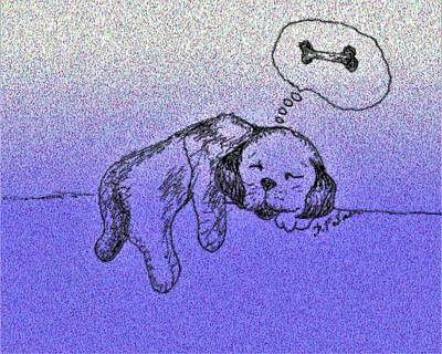 Drawing - Sleepy Puppy Dreams by Denise F Fulmer