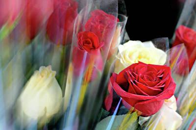 Sleeves Of  Red Roses Art Print by Diana Angstadt