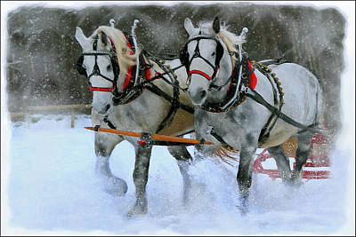 Digital Art - Sleigh Ride by Posey Clements